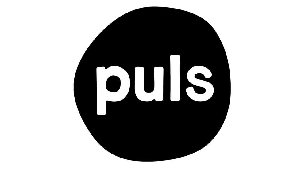 Häusliche Gewalt gegen Männer: PULS Reportage